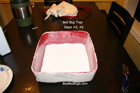 how to catch bed bugs bed bug traps make your own detector or trap for under 10