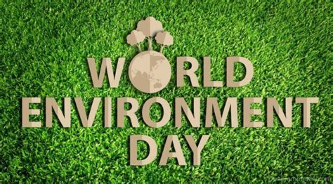 environment day wonderful world environment day pic desicomments