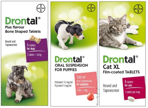 drontal for dogs drontal drontal for dogs cats drontal plus wormer viovet
