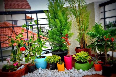 3 Smart Small Space Gardening Ideas And Tips For The City Small Space Gardening Ideas