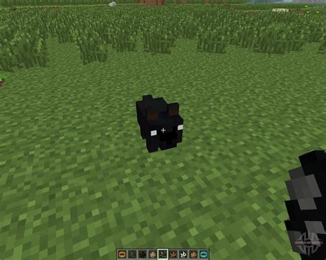 dogs mods copious dogs 1 6 4 for minecraft