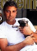 george clooney pug pugs nl pug center pug owners