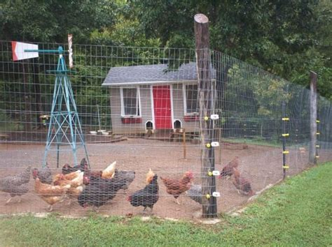 651 best images about chicken coops on