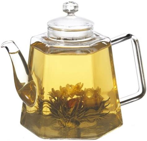 Review The Ingenuitea Microwavable Tea Pot by Gt Grosche Vienna Stove Top Water Kettle And Infuser Glass