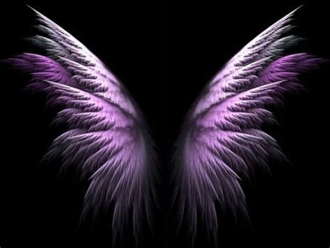 side view of angel wings google search fairies angels