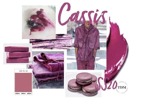 cassis color cassis color trend 2020 colorpalette in 2019 color