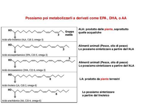 acido arachidonico alimenti gli acidi grassi essenziali efa vitamina f omega 3 e 6