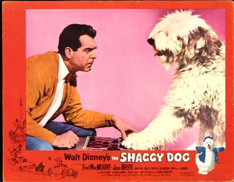 the shaggy 1959 catalog