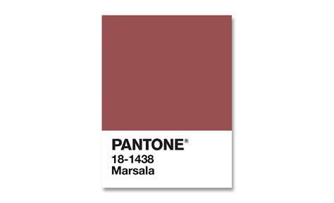 pantone s pantone s colour of the year marsala huh