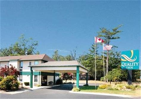 free puppies bay city mi quality inn by the bay in traverse city mi free