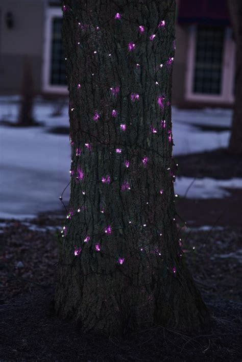 net style tree trunk wrap christmas lights 2 x 8 purple mini incandescent net style tree trunk wrap