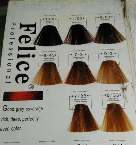 gaya terbaru  varian warna cat rambut felice