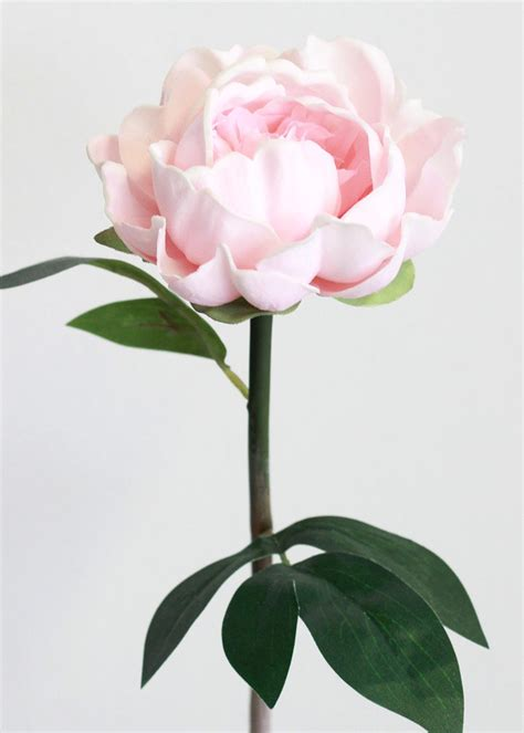 pink peonies and other flowers from long ago new england pink real touch peony stem wedding flowers afloral com