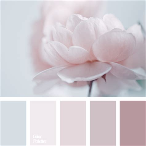 colours in the style of quot shabby chic quot color palette ideas