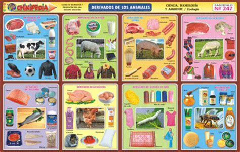 imagenes de animales y sus derivados chikipedia y chikilines l 193 minas escolares n 186 247