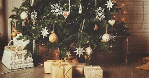 the best time to buy a christmas tree purewow