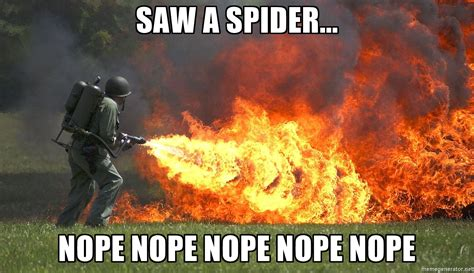 I Saw A Spider Meme - i saw a spider meme 100 images i saw a spider i saw a