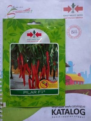 Benih Bawang Merah Terbaik jual benih cabe merah besar pilar f1 kualitas terbaik