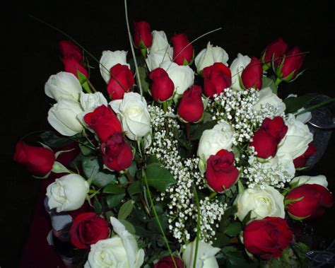 all best picos poze desktop flori buchete de flori aranjament floral buchete de trandafiri poze imagini