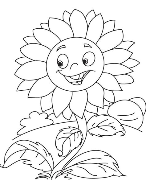 sunflower coloring pages preschool sunflowers preschool coloring pages