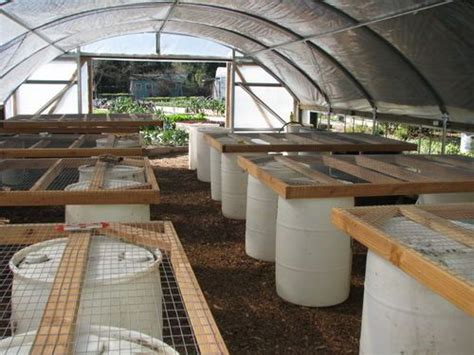 greenhouse bench heating pin by greg eddy on the growing room pinterest