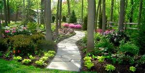shade garden landscape ideas photograph landscape gar