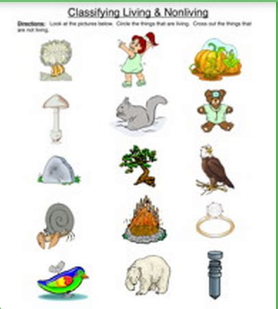 Design Your Own Kit Home Online by Classifying Living And Nonliving Things Worksheet
