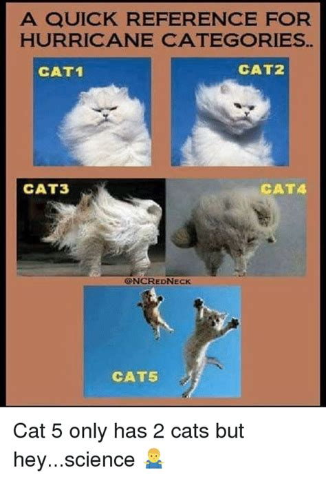 Meme Categories - a quick reference for hurricane categories cat1 cat2 cat3