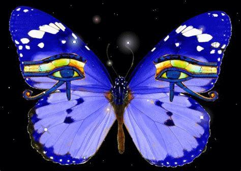 imagenes de mariposas animadas con movimiento gifs de animales mariposas con movimiento
