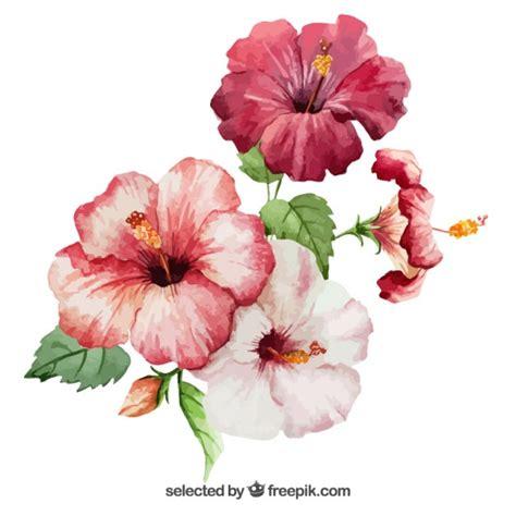 fiori di ibisco fiori di ibisco acquerello vettore gratuito new