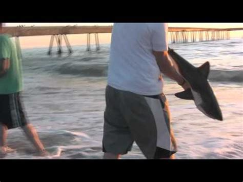 baby shark movie baby shark 911 youtube