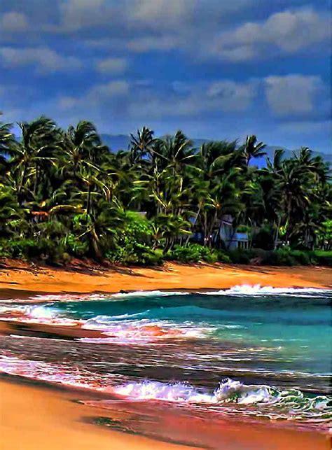pin by aloha on 1869 1869 best images about hawaii aloha state on hilo hawaii black sand and hawaii