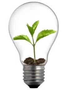 light bulb light bulb home decorating