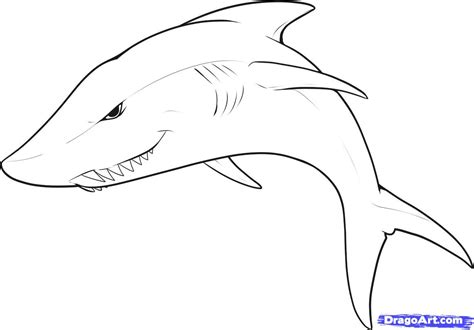 How to draw an easy shark step by step sea animals animals free