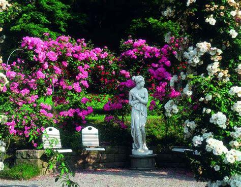 Www Mein Schöner Garten De 2096 by Blumeng 195 164 Rten In Baden Baden 171 In Baden Baden