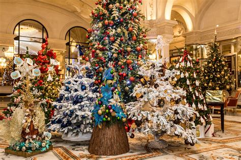 christmas in monaco princess charlene foundation celebrates its 5th anniversary and other princely news