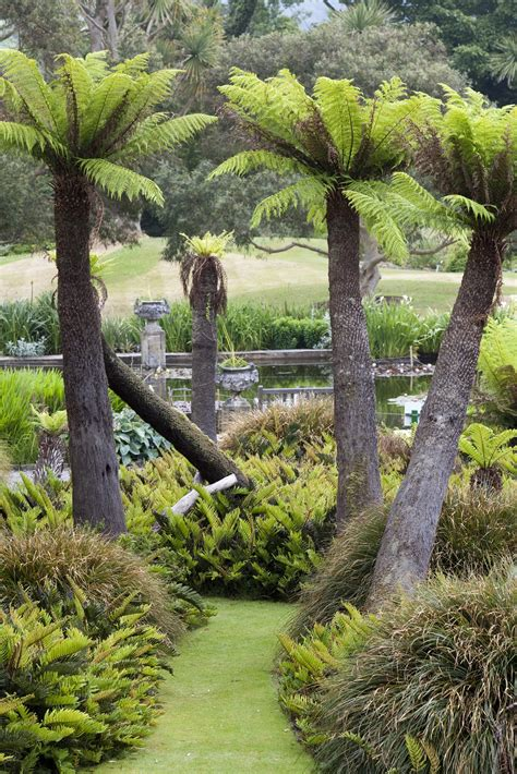 Logan Botanic Gardens Gardens And Nurseries In Dumfries Galloway