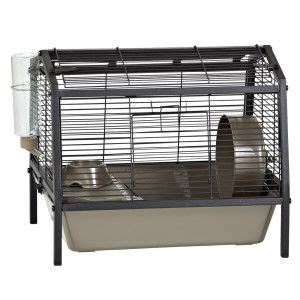 cages petsmart hamster habitat hamsters and habitats on