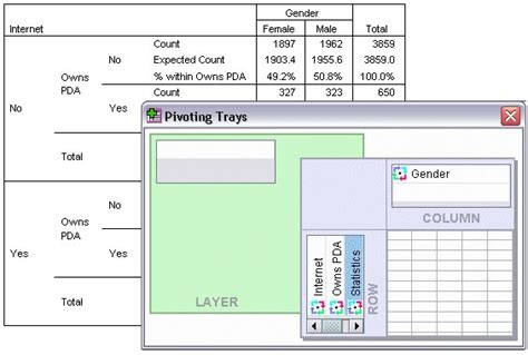 tutorial spss 22 pivoting tables