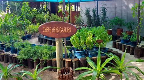 herb garden ashwiniahujaonline s weblog the herb garden on kuredu