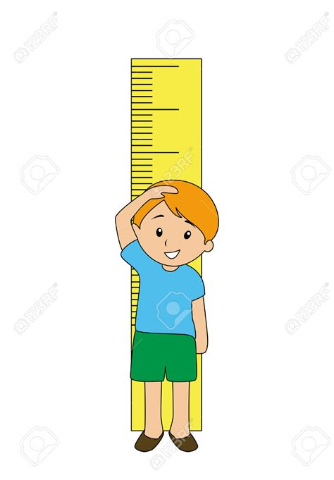 picture height grow tall clipart clipground