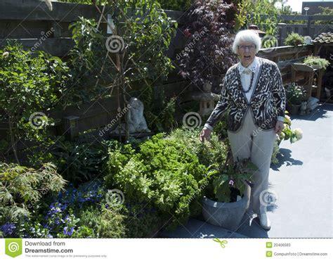 Grandmas Garden by In The Garden Stock Photos Image 20406583