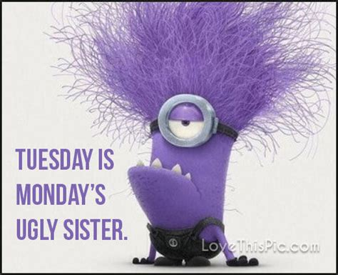 tuesday  mondays ugly sister pictures