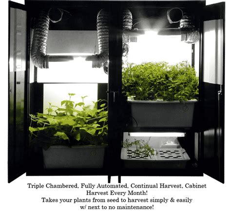 grow box trnty png