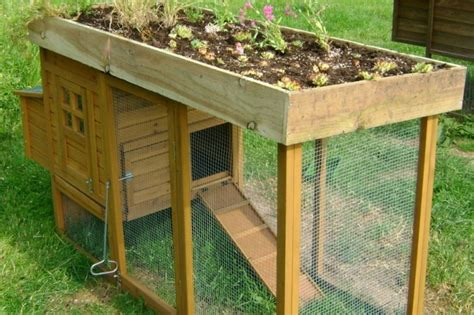 14 ingenious chicken coop plans amp designs