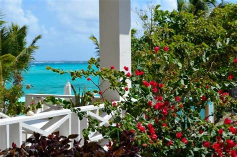 serenity cottage shoal bay village anguilla foto s