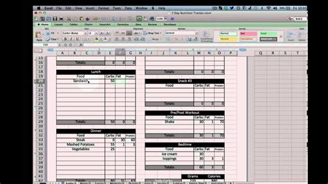 Excel Nutrition Tracking Template Youtube Nutrition Template Excel