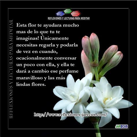 Una Flor Reflexiones Y Lecturas Para Meditar | una flor reflexiones y lecturas para meditar new style