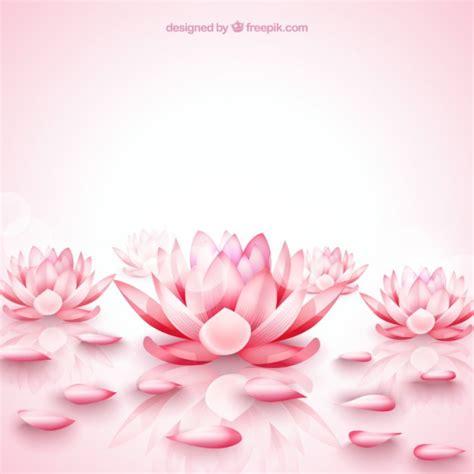 fiore di loto rosa fiori di loto rosa sfondo scaricare vettori gratis