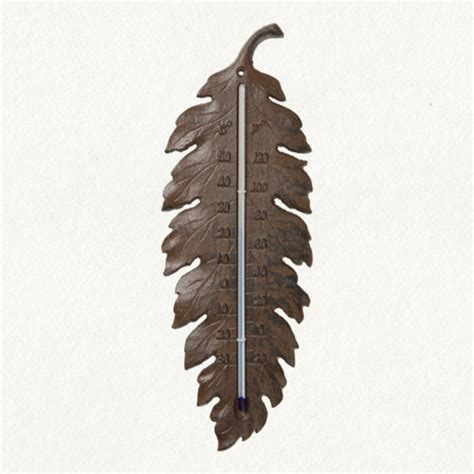 Decorative Outdoor Thermometers iron leaf thermometer eclectic decorative thermometers by terrain